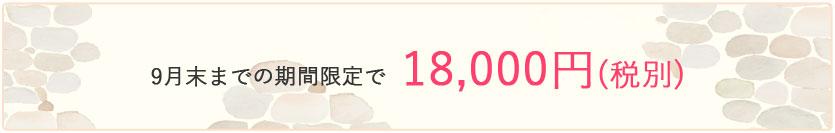 9月末まで15,000円